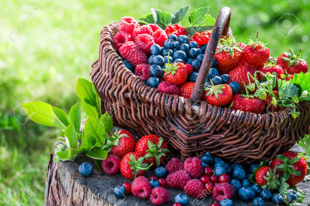 Sommerzeit ist Beerenzeit
