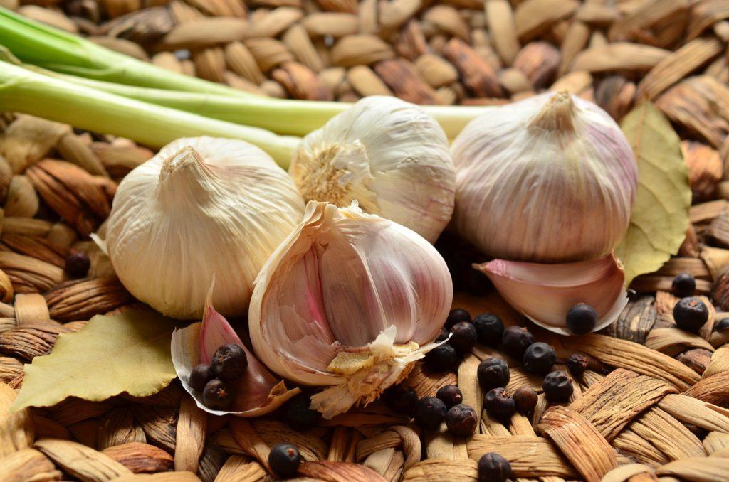Knoblauch – Die Heilpflanze schlechthin!