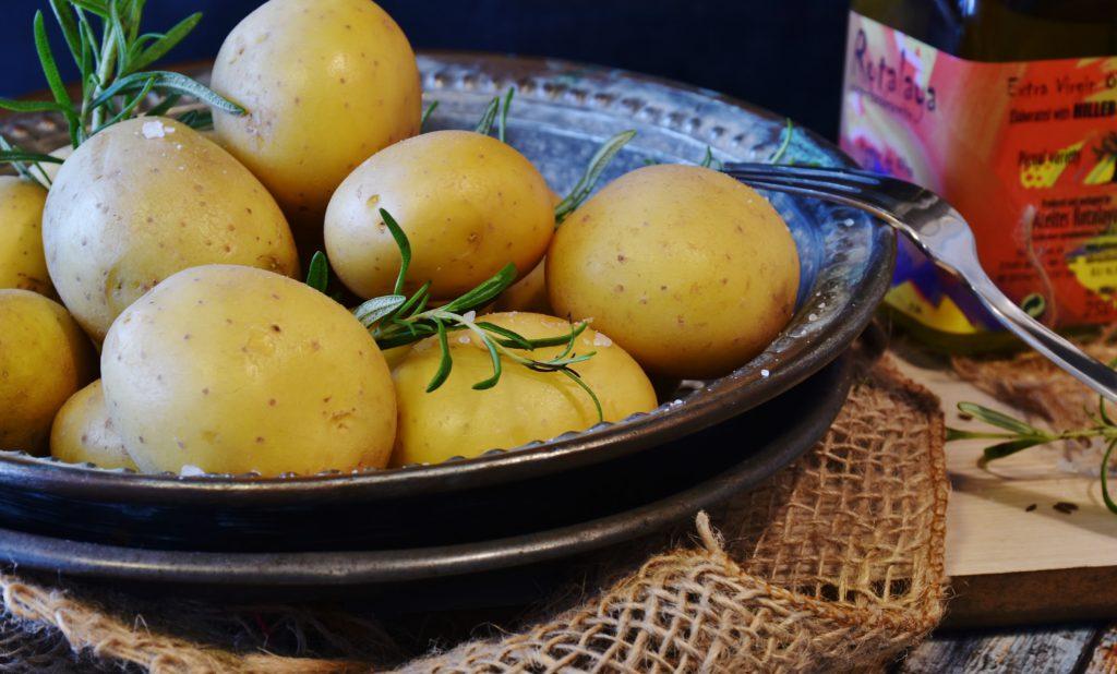 Die Kartoffel – vielseitig, köstlich und gesund!